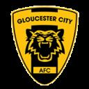 Gloucester_City_A.F C