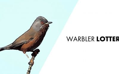 Warbler Lottery