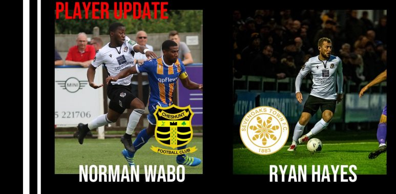 Player Update Norman Wabo, Ryan HAYES